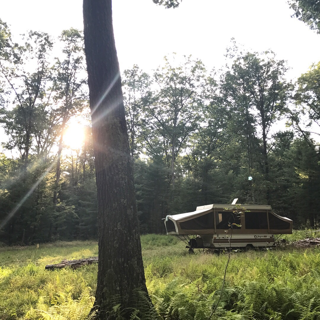 Sproul State Forest Camping