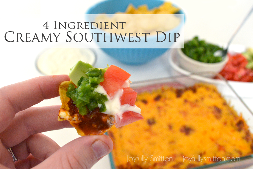 4 Ingredient Creamy Southwest Dip