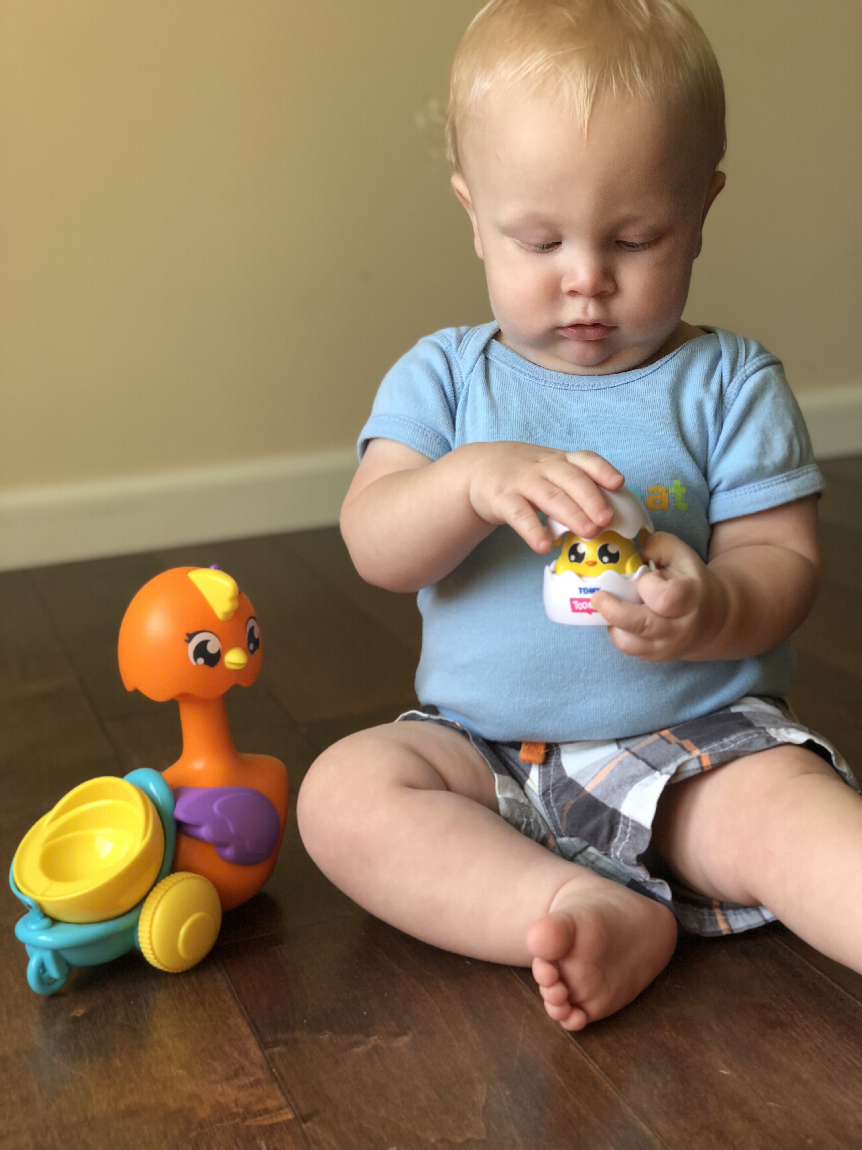 Developmental Learning with Toomies by TOMY